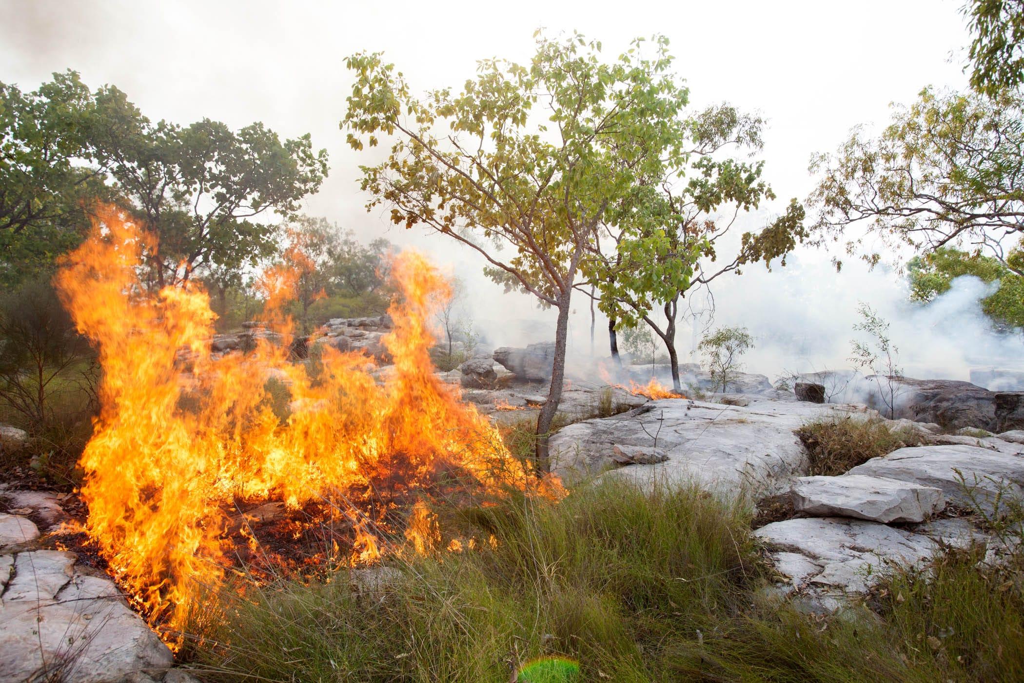 Savanna Burning Methodology